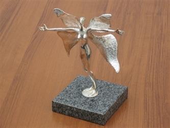 """Награда """"Полет над нощта"""""""